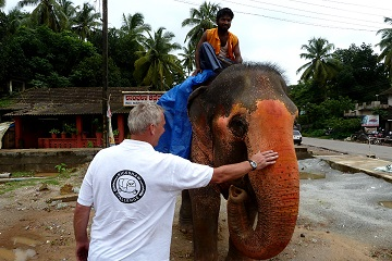 Rickshaw Challenge Tamilnadu Run Chennai Tamil Nadu crazy adventure tuk tuk race in India elephant blessing