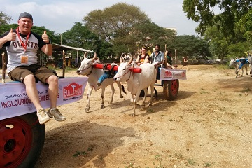 Bullathon, a holiday adventure by Travel Scientists in the real rural India. Explore Tamil Nadu on an ox cart. Be and dress whatever you like, go crazy